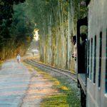 পার্বতীপুর টু চীলমারি (রমনা বাজার)